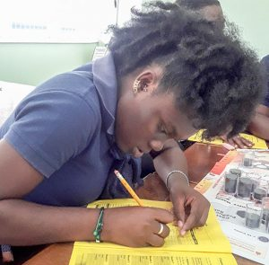 CED takes Micro  Business Game Simulation to Southern Grenadines