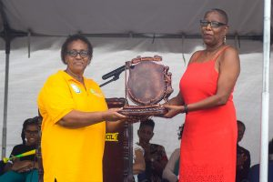 Gloria Ballantyne  exemplified with International Netball  Series honour