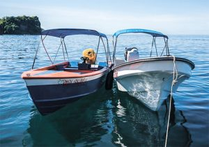 Whale and Wildlife Tour Boats launched in Barrouallie