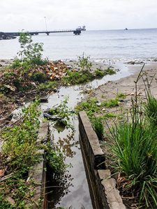 Roucher Bay residents fedup of intolerable stench in the area