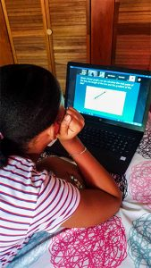 Local schools begin to embrace e-learning