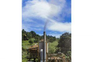 Asphalt exhaust killing business – Nature Care