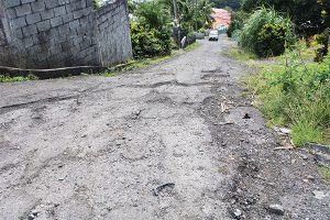 Potholes, strict Covid protocols hurting Sharpes vanmen