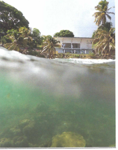 Letter of opposition to the application to remove a reef at Villa