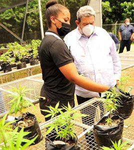 PM tours medicinal cannabis  facilities